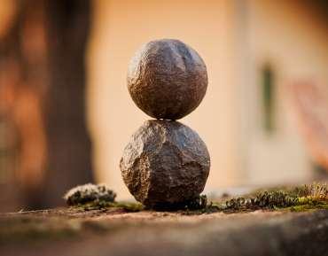 ¿Qué cultivamos en el campo de la mente?